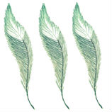 3-feathers