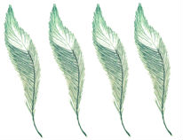 4-feathers
