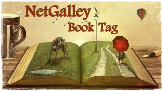netgalley-book-tag