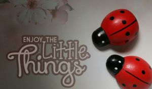 enjoy-the-little-things-906291_960_720