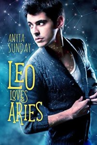 Leo loves Aries